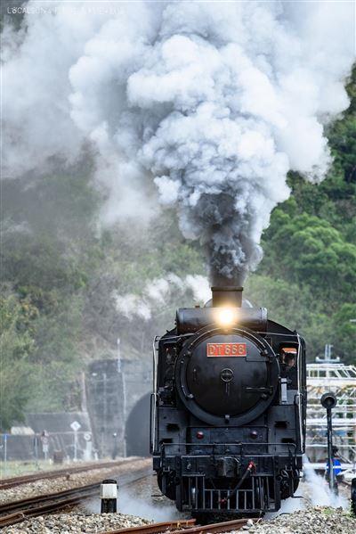 鐵道迷看過來!臺鐵「仲夏寶島號」20日開賣