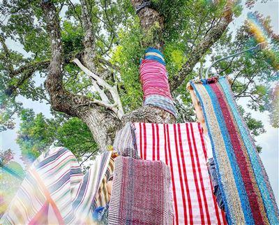 紅葉村曬布節重塑太魯閣族文化記憶
